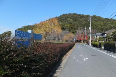 f:id:akira-kami:20131223115857j:image:w360