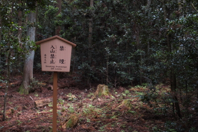 f:id:akira-kami:20140506105421j:image:w360