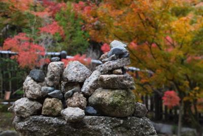 f:id:akira-kami:20141108095013j:image:w640