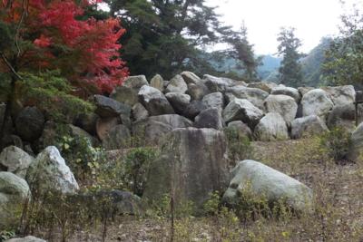 f:id:akira-kami:20141108095120j:image:w360