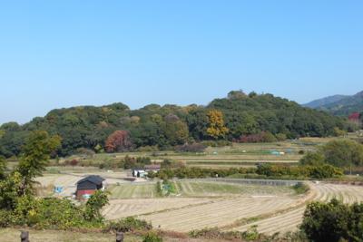 f:id:akira-kami:20141122111501j:image:w360