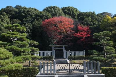 f:id:akira-kami:20141122113702j:image:w360