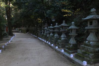 f:id:akira-kami:20141122123931j:image:w360