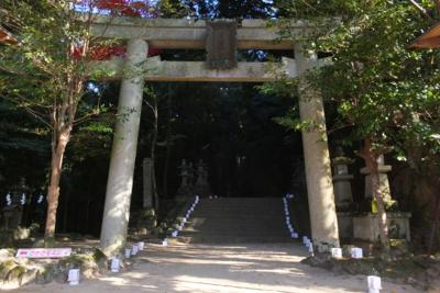 f:id:akira-kami:20141122140753j:image:w360