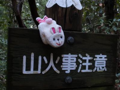 f:id:akira-kami:20141229151758j:image:w360