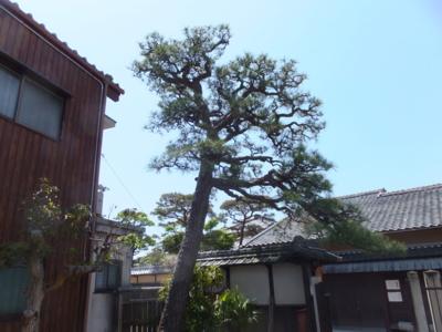 f:id:akira-kami:20150501114518j:image:w360