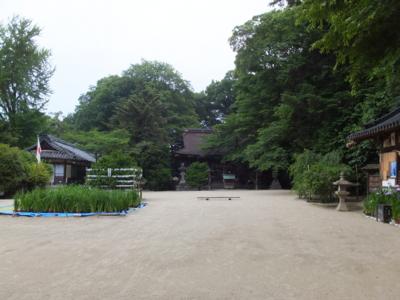 f:id:akira-kami:20150613153014j:image:w360