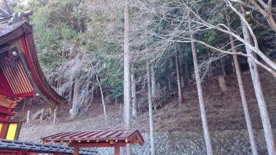 f:id:akira-kami:20151229132602j:image:w360