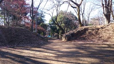 f:id:akira-kami:20151230103504j:image:w360