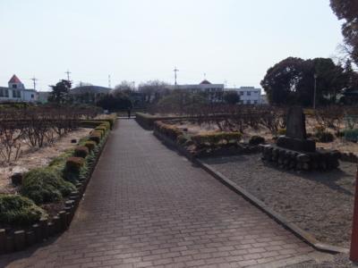 f:id:akira-kami:20170305152118j:image:w360