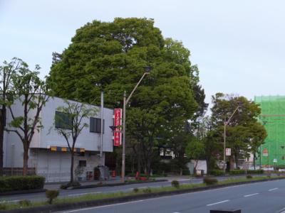 f:id:akira-kami:20170503060734j:image:w360