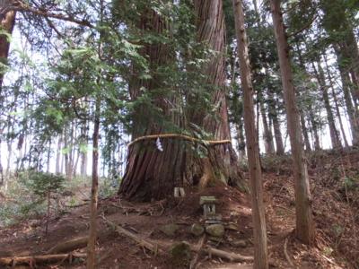 f:id:akira-kami:20170503093619j:image:w360