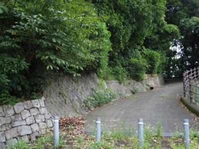 f:id:akira-kami:20170815104933j:image:w360