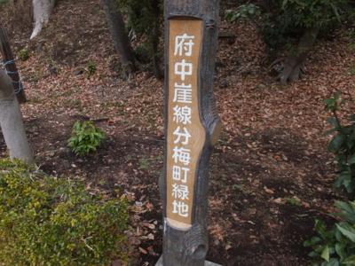 f:id:akira-kami:20180203130741j:image:w360
