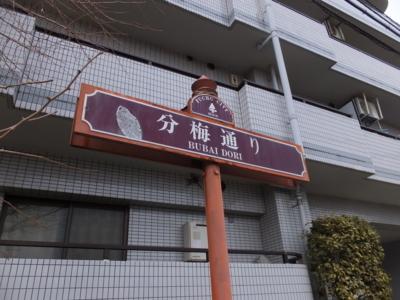 f:id:akira-kami:20180203131438j:image:w360
