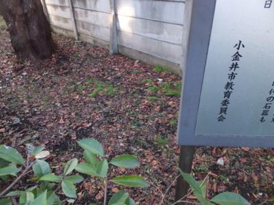 f:id:akira-kami:20180203164304j:image:w360