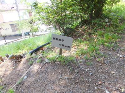 f:id:akira-kami:20180430113535j:image:w360