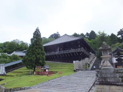 f:id:akira-kami:20180624101821j:image:w360