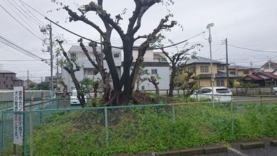 f:id:akira-kami:20180902134506j:image:w360