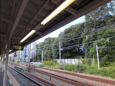 f:id:akira-kami:20181020145919j:image:w360