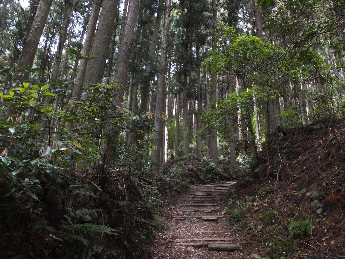 f:id:akira-kami:20190428121220j:plain