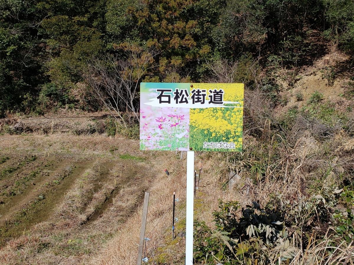 f:id:akira-kami:20200119123835j:plain