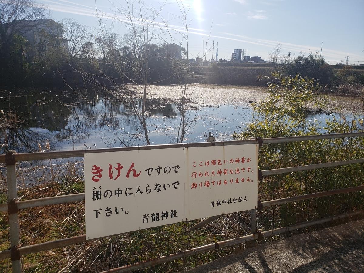 f:id:akira-kami:20200202141311j:plain