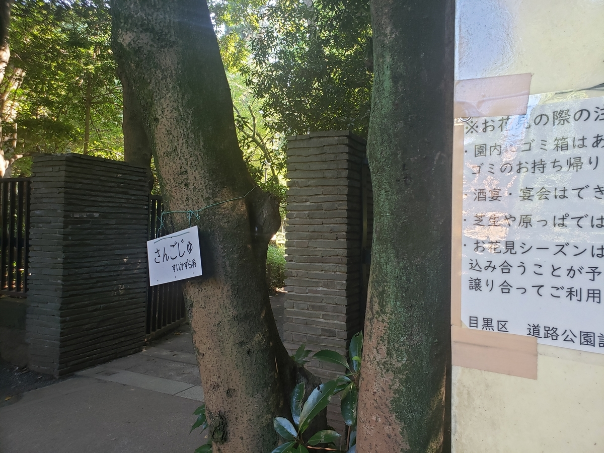 f:id:akira-kami:20200820150203j:plain