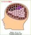 スパロウの脳内