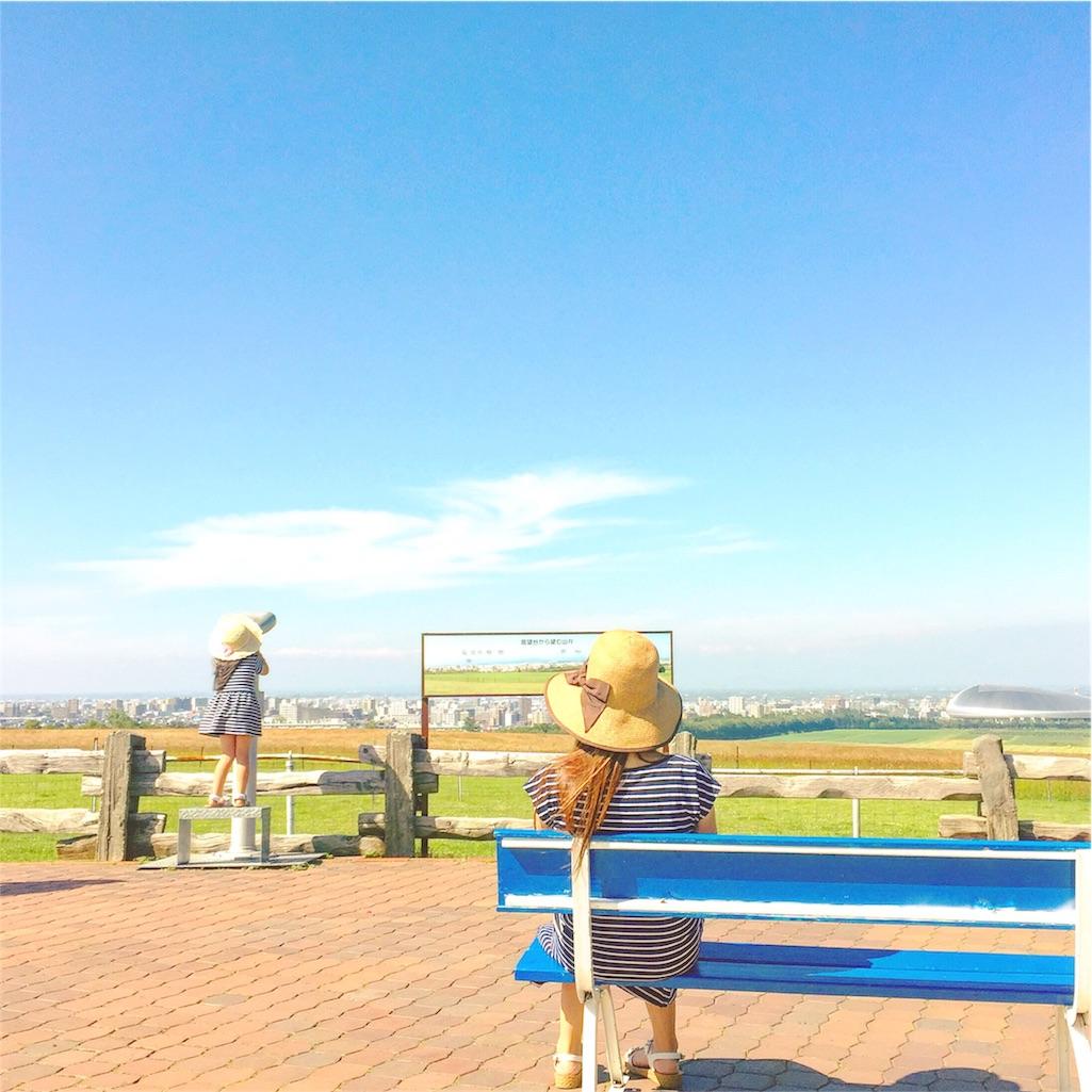 f:id:akira-wakasugi:20170501105056j:image