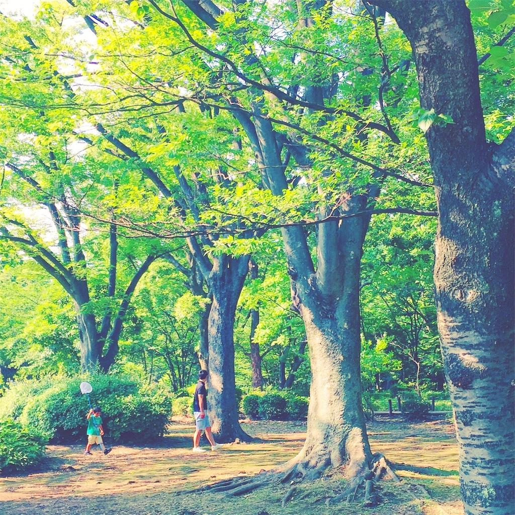 f:id:akira-wakasugi:20170830111943j:image