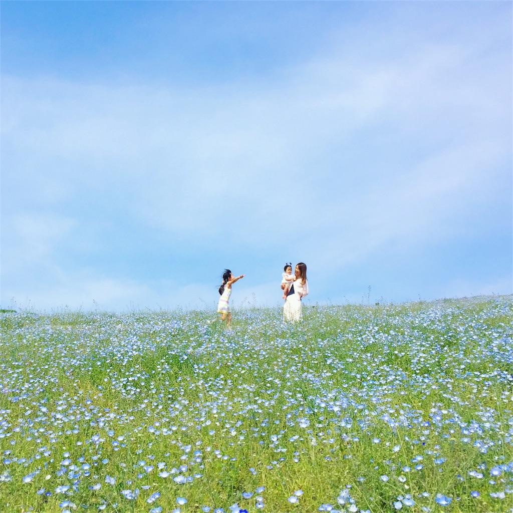 f:id:akira-wakasugi:20171213051825j:image