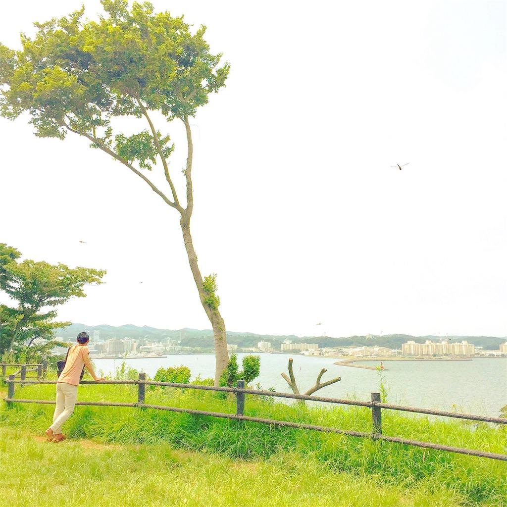 f:id:akira-wakasugi:20180307083049j:image