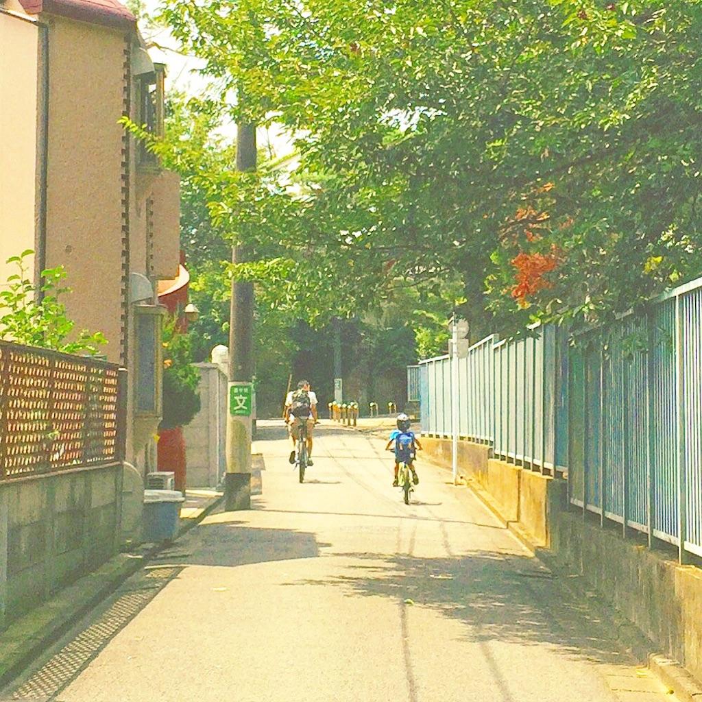 f:id:akira-wakasugi:20180530181551j:image