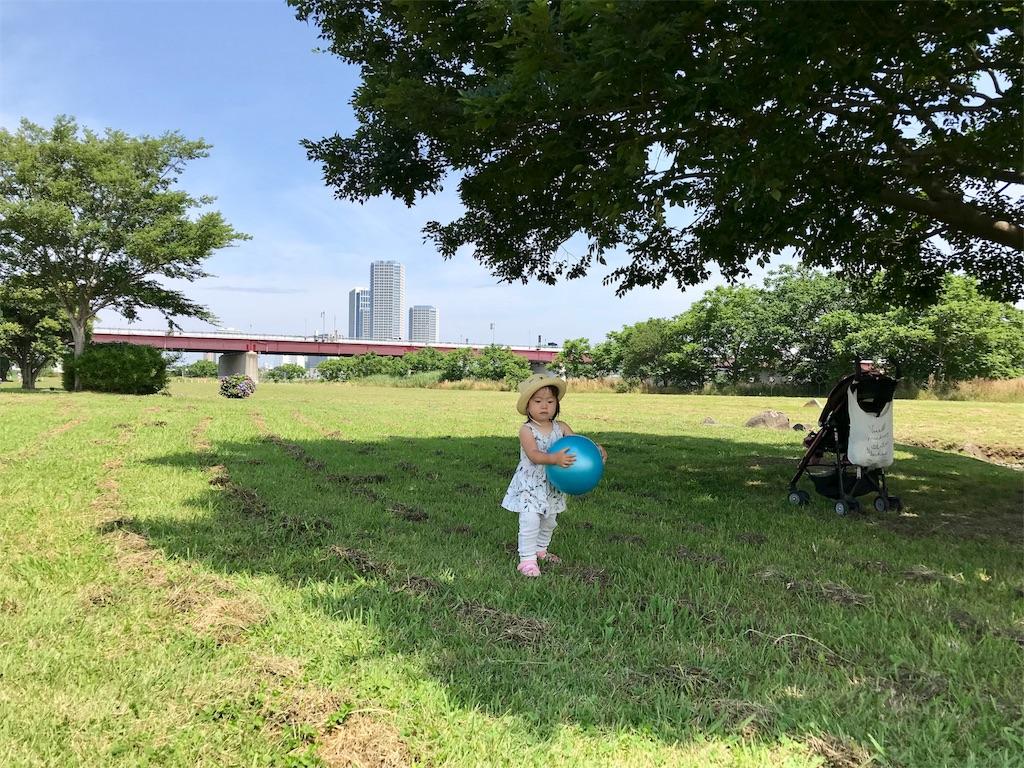 f:id:akira-wakasugi:20180619112534j:image