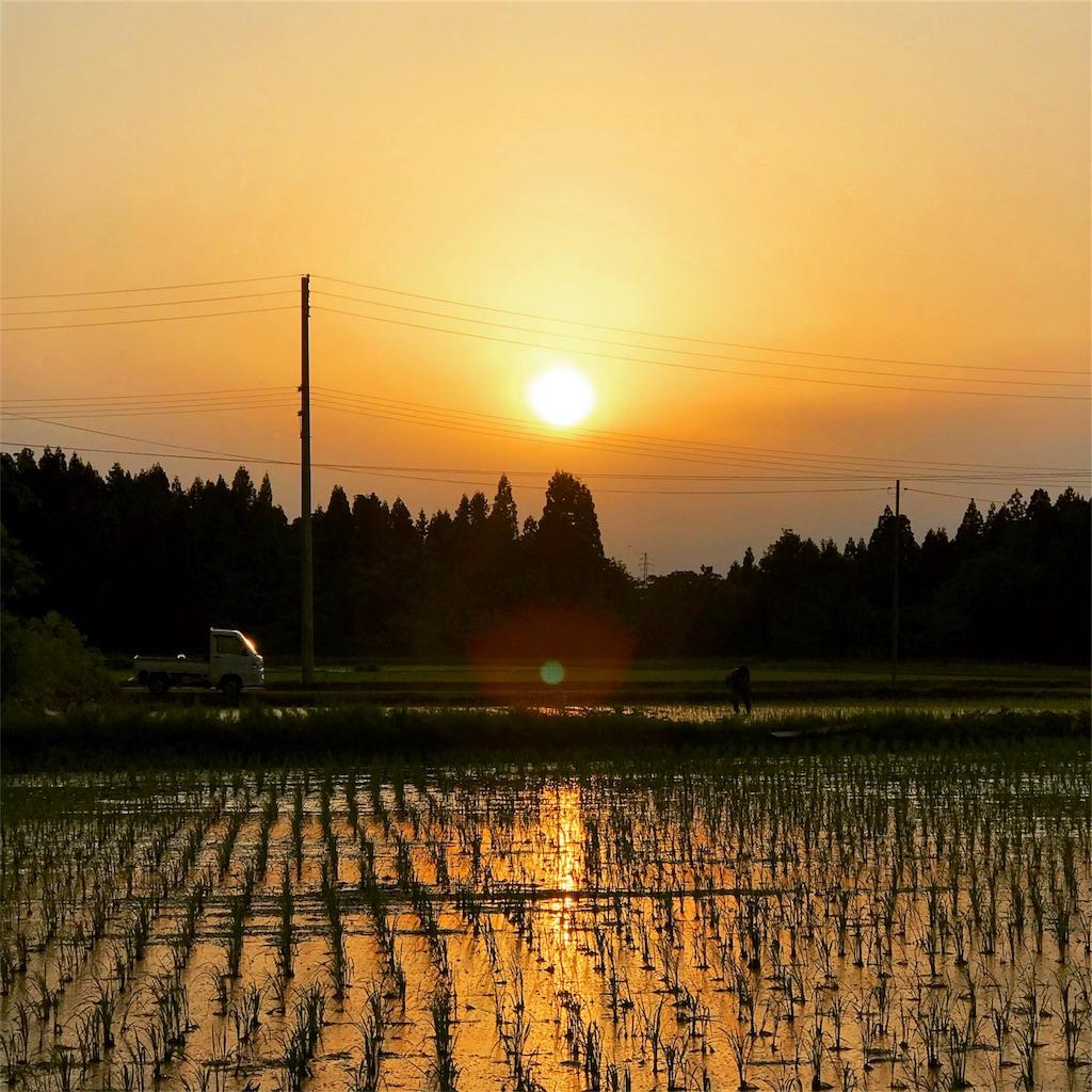 f:id:akira-wakasugi:20181024202016j:image