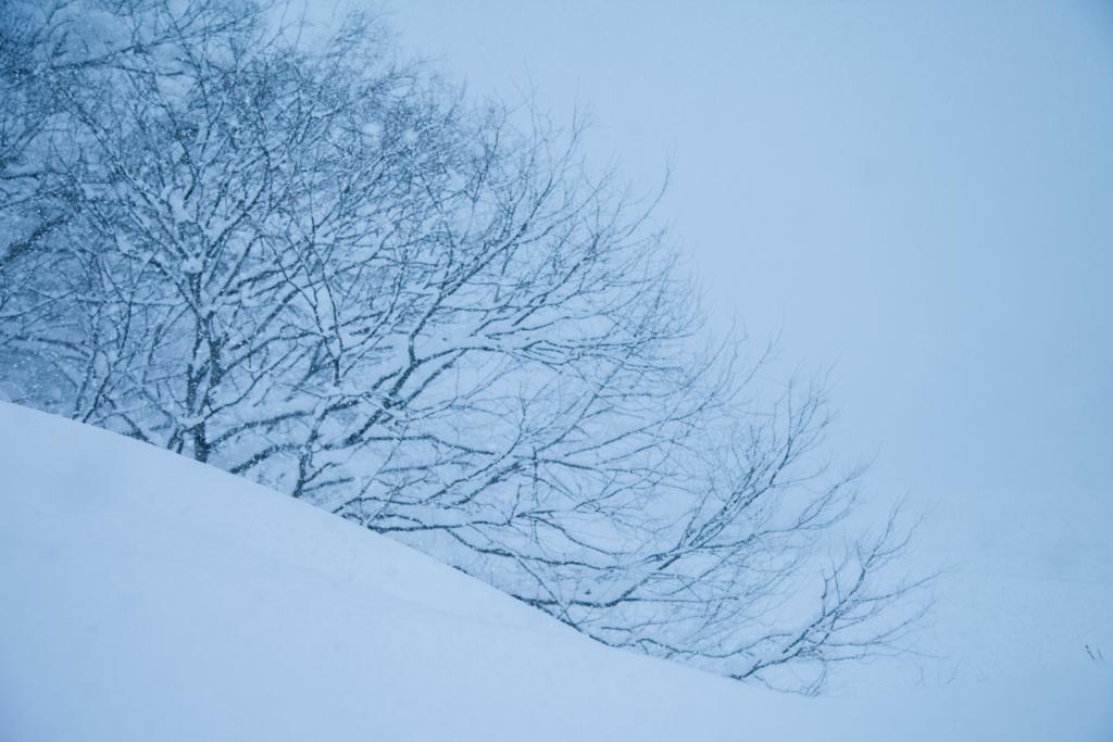 雪女が登場した光景
