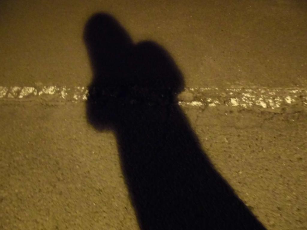 LUNA SEAの歌のまとめを暗示する影