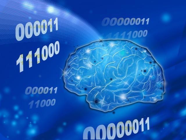 数学で必要となる人間の脳