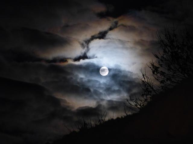 おぼろ月夜のような悲しき赤穂藩