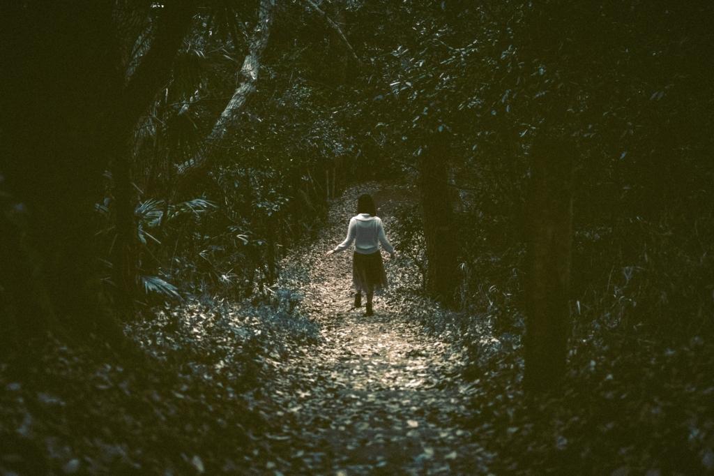 呪いを感じさせる森