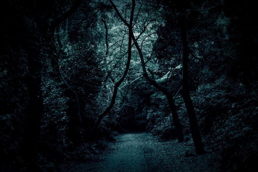 怖さを感じてしまう山道