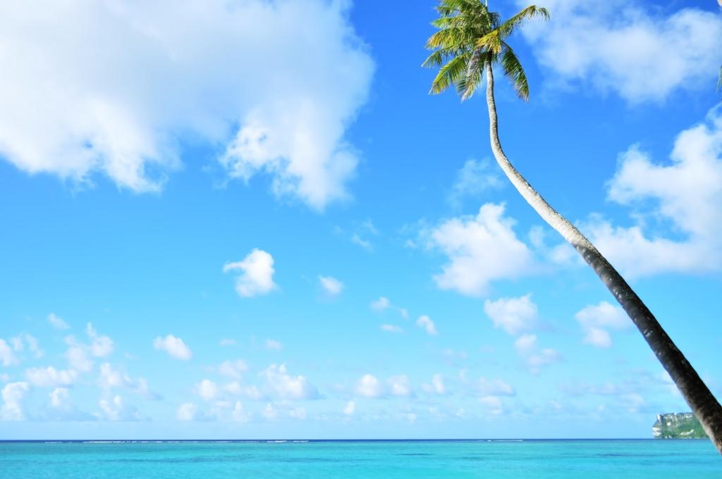 ハワイの海は青色