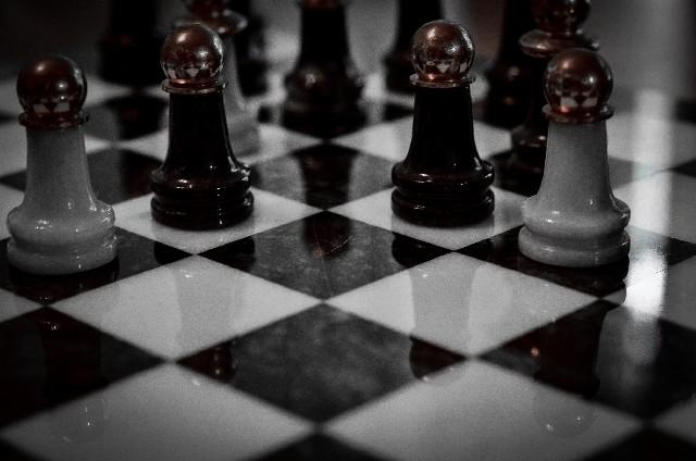 チェスを楽しんでいたデイヴィッド親子