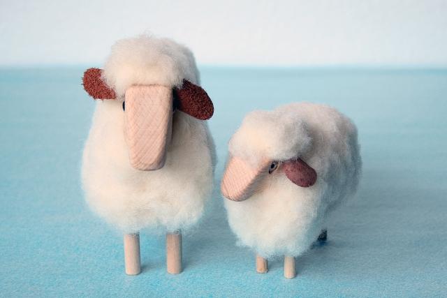 ジミー大西さんが羊を診察