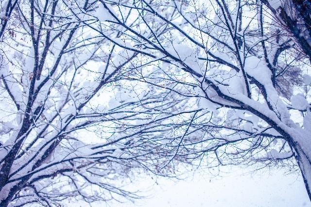 赤穂浪士達が討ち入りをする雪の日