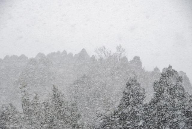 ケイオニウスを苦しめる吹雪