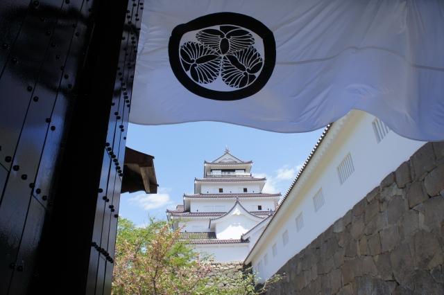 江戸幕府にゆかりのある城