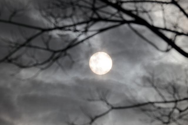 リングの恐ろしさを感じさせる月