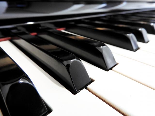 のだめがピアノで演奏